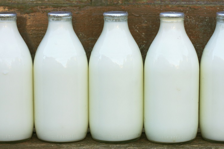 Does Powdered Milk Need To Be Refrigerated After Mixing